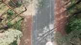 джерси : Aerial drone view of the cycle path in the summer forest with the cyclist riding on a bicycle