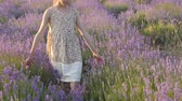 beautiful little girl walking on the field of lavender Stok Video