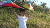 mischief : cheerful little boy is holding up a colorful kite above his head. game imagination flight of dreams. childrens health