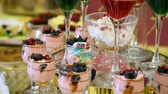chef quipe : colorful fruit dessert jelly and souffle in glass. wedding celebratory dinner food design slide movement