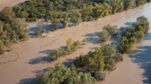 flowing water : Top aerial view of muddy flood river flow in forest Stock Footage