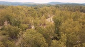 banks : Top aerial view of muddy flood river flow in forest Stock Footage