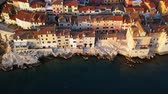 seagull : Sunset flight over old town Rovinj, Istria, Croatia