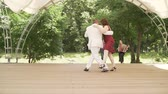 accordionist : Accordion and violin playing in the park. A woman in a red dress and a man in a white suit are dancing tango. An elderly couple dancing tango in the park.