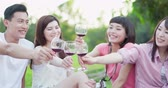 wine : people smile happily, enjoying red wine at a picnic