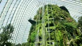 cúpulas : Cloud Forest Dome, Singapore - July 24, 2018: Inside of the building in Garden by the Bay