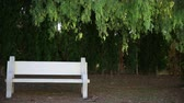 deserted : Bench Stock Footage