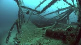 snapper : Alma Jane wreck in Puerto Galera. Wreckdiving in Philippines. 4k footage