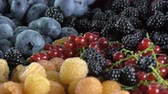 ягода : fresh berries : blueberry , yellow and red raspberry , red currant , blackberry rotating