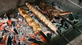 chop sticks : Cooking meat on the coals Stock Footage
