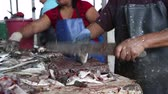 dilimleme : Santa Elena, Ecuador, October 2014. People cleaning fish in a factory on the Pacific coast.