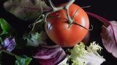 beslenme : tomato and lettuce salad