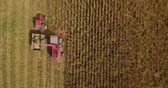 Aerial footage of corn harvest with combine and tractor on a fieldon a field