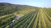 au volant : Aerial view of tractor spraying vines in vineyard on early summer morning