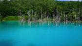turista : Beauty biei-shirogane Blue Lake Stock mozgókép