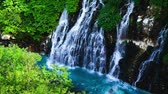 platina : Waterfall in biei-Cho