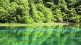esmeralda : Fresh green  Jiuzhaigou Stock Footage