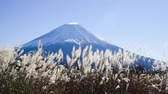 outono : Asagiri plateau of Mt. Fuji Stock Footage