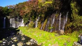 outono : shiraito falls in fujinomiy-city?