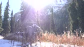 neanderthal : The sun is moving rapidly over the mountain landscape. Next to the high spruce stands the old houses made of poles and animal skins Stock Footage