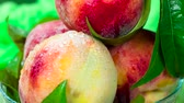 деликатес : Ripe peaches with green leaves close-up rotate in front of the camera Стоковые видеозаписи