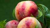 delicadeza : Four Large Peaches in a Cup. A glass cup with ripe, juicy peaches slowly rotates on a dark green background