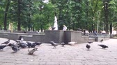 crumbs : Little child scares pigeons in the park in spring.
