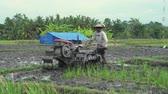 till : Farmer working on rice field. People plow with tractor in rice field - October 2017: Ubud, Bali, Indonesia