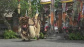 церемониальный : Balinese traditional dancers. Barong dance performing on stage - October 2017: Gianyar, Bali, Indonesia Стоковые видеозаписи