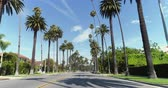 vaqueiro : Point of view shot of Beverly Hills, Los Angeles. Driving under palm trees - August 2017: Beverly Hills, Los Angeles, California, US Vídeos