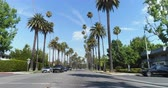 родео : Point of view shot of Beverly Hills, Los Angeles. Driving under palm trees - August 2017: Beverly Hills, Los Angeles, California, US Стоковые видеозаписи