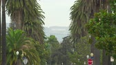 hollywood sign : Iconic Hollywood sign passing palm trees. Los Angeles cityscape - August 2017: Los Angeles California, US