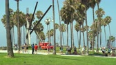 Венеция : Ocean park, beach park with palm trees - Venice beach, Santa Monica - August 2017: Los Angeles California, US