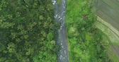 Южная Америка : Flying over of rainforest river and rice terrace. Aerial view of jungle in Bali.
