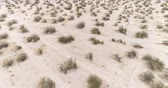 кактусы : Flight over of Mojave desert, California. Aerial view of barren landscape