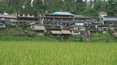 tegalalang : Buildings on the rice terrace. Tegalalang rice terraces - October 2017: Ubud, Bali, Indonesia