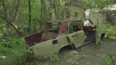 atomik : Car wrecks in the forest close to Chernobyl. Chernobyl nuclear disaster. Slider shot 30km Chernobyl, exclusion zone Stok Video