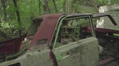 wrack : Car wrecks in the forest close to Chernobyl. Chernobyl nuclear disaster. Slider shot- Juni 2017: 30km Chernobyl, exclusion zone Stock Footage