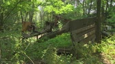 катастрофа : Rusty truck wrecks in the forest in Pripyat. Chernobyl nuclear disaster. Slider shot 30km Chernobyl, exclusion zone