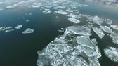 buzlu : Flight over of iced river, drifting ice - Budapest, Danube river