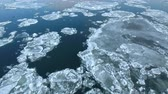 nível : Flight over of of ice floes, drifting ice, glacial sea