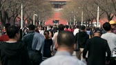 multidão : Time lapse of crowded people in Forbidden City - March 2017: Beijing, China