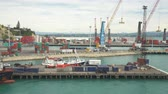 freighter : Industrial port of Napier, New Zealand - March 2017: Napier, New Zealand