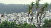 nueva zelanda : Wellington panorama - New Zealand