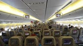 аренда : Airplane inside view - passengers seats Стоковые видеозаписи