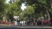 терраса : People walking in Chapultepec castle park walkway - Mexico City, Mexico Стоковые видеозаписи