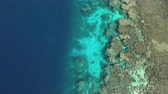 skuba : Aerial view of coral reef - Shaab Rumi, Precontinent, Sudan Stok Video