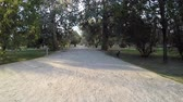 proximidade : lonely walk on the gravel path in a park along the tree