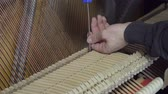 skládat : Tuning Piano with a screwdriver. Close up shot of tuning piano Dostupné videozáznamy