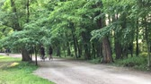 men : Man riding in the park Stock Footage